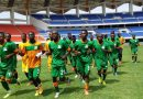 Xenophobia: Zambia cancels friendly with S/Africa
